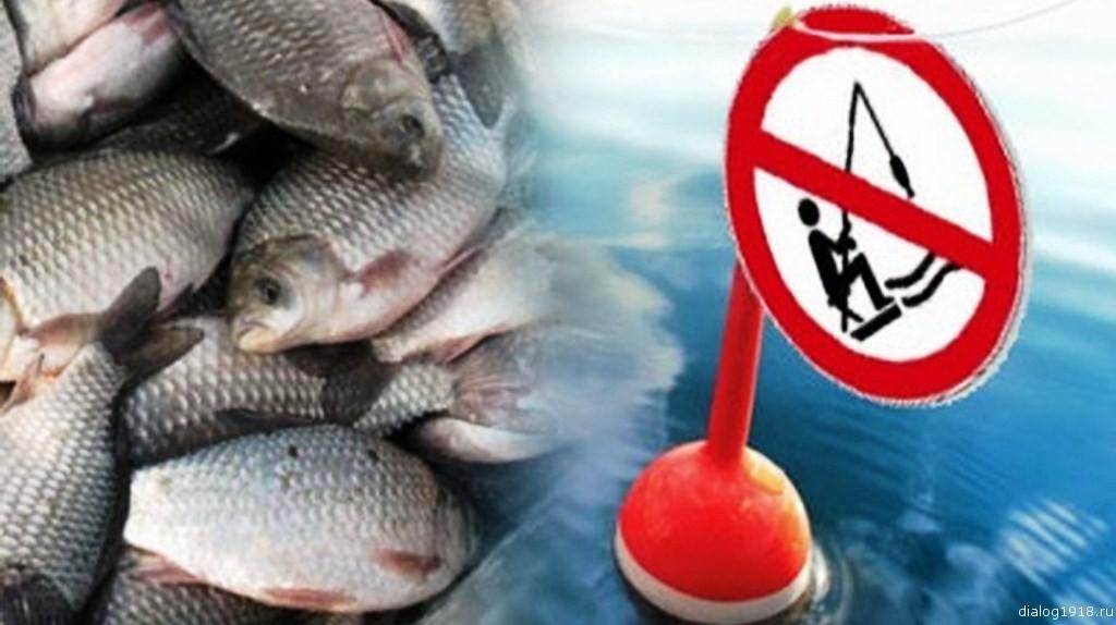 штрафы за ловлю рыбы в мае