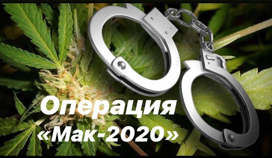 Предупреждение о дикорастущей конопле вся правда а марихуане